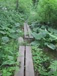 older boardwalks
