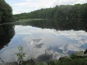 Mann's Pond