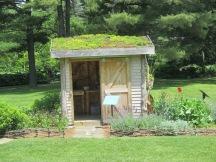 Martha Stewart greenroof garden