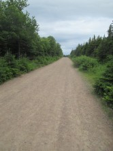easy dirt road