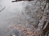 patterned ice
